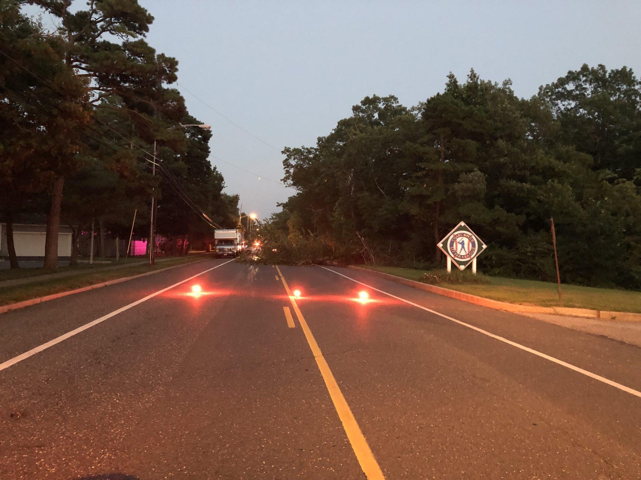 TR: Mapletree Road- Down Tree