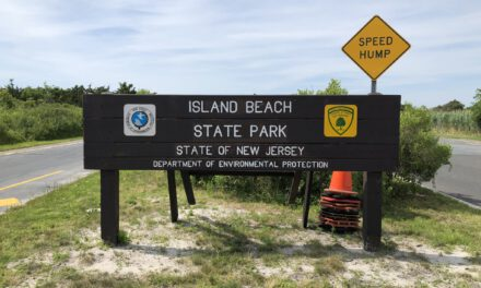 AG Grewal and Colonel Callahan Praise New Jerseyans for Complying with Social Distancing Rules Despite Big Crowds at Parks and Beaches