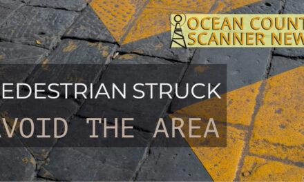 Brick: Pedestrian Struck