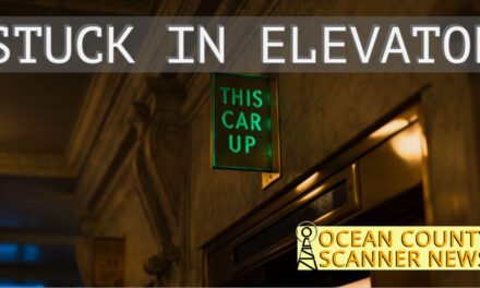 BRICK : ELEVATOR RESCUE