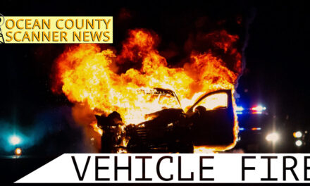 Stafford Township: Vehicle Fire on Bridge