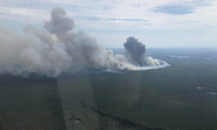 Forest Fire Aerial Pictures & Video