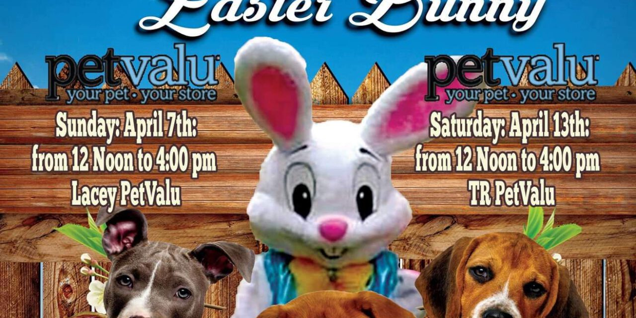 Lost Dog Search & Rescue to host Pictures with the Easter Bunny