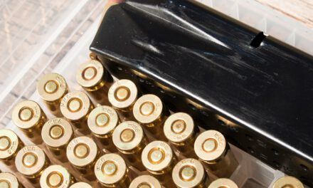 LACEY: Gunshots or Not?