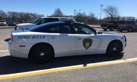 TOMS RIVER: Driver Runs Over Fire Hydrant, Signs and More!