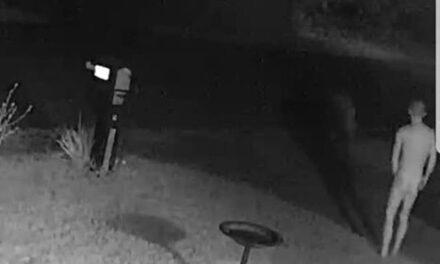 LACEY: Naked Man Runs Around Neighborhood