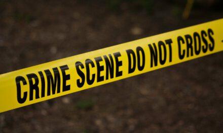 LEH: Juvenile Attempts to Carjack Security Vehicle