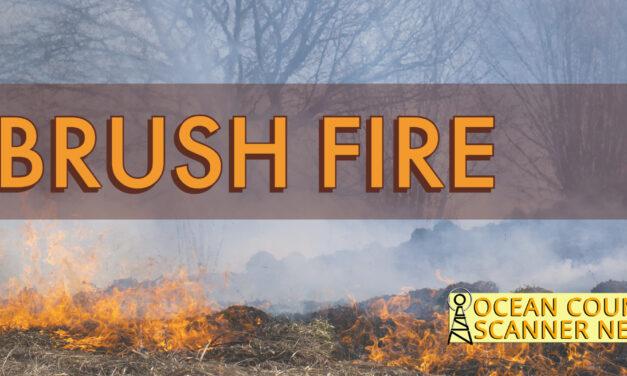 OAKHURST: BRUSH FIRE BETWEEN TWO HOUSES