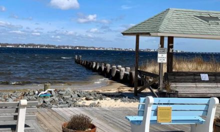 OCEAN GATE: Information Regarding Summer Beach Season
