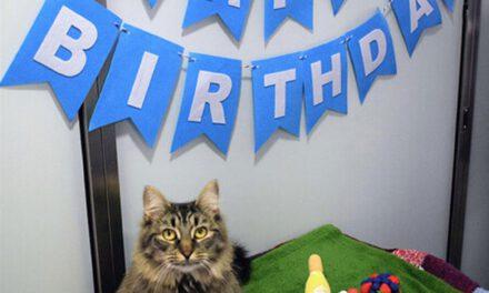 PINE BEACH: Unhappy Birthday?