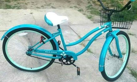 Seaside Heights: Stolen Bicycle