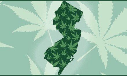 NJ Votes YES for Recreational Marijuana!