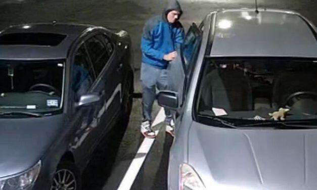 WARETOWN: Help Identify Criminal Suspects