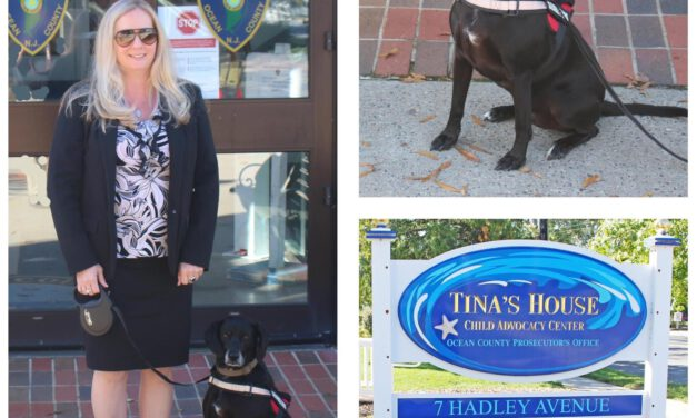OCPO Obtains Service Dog to Support Crime Victims