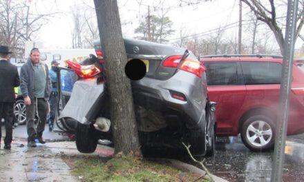 New Egypt: Car VS. TREE ON Lakewood & Toni Dr.