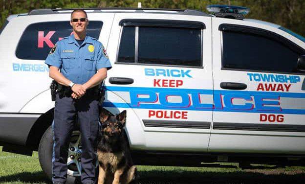 Brick Police: Firearms Training Near Ridge Rd. Today