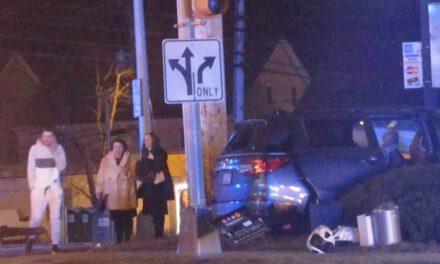 LAKEWOOD: Midnight Crash Lands one Vehicle in Shrubs