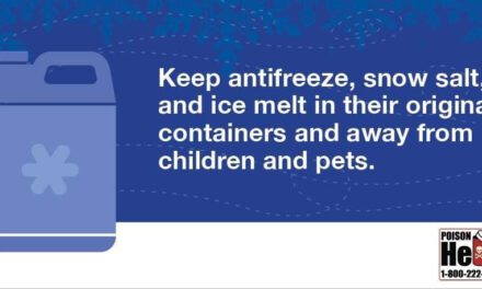 Common Winter Household Items May be Dangerous to Kids & Pets
