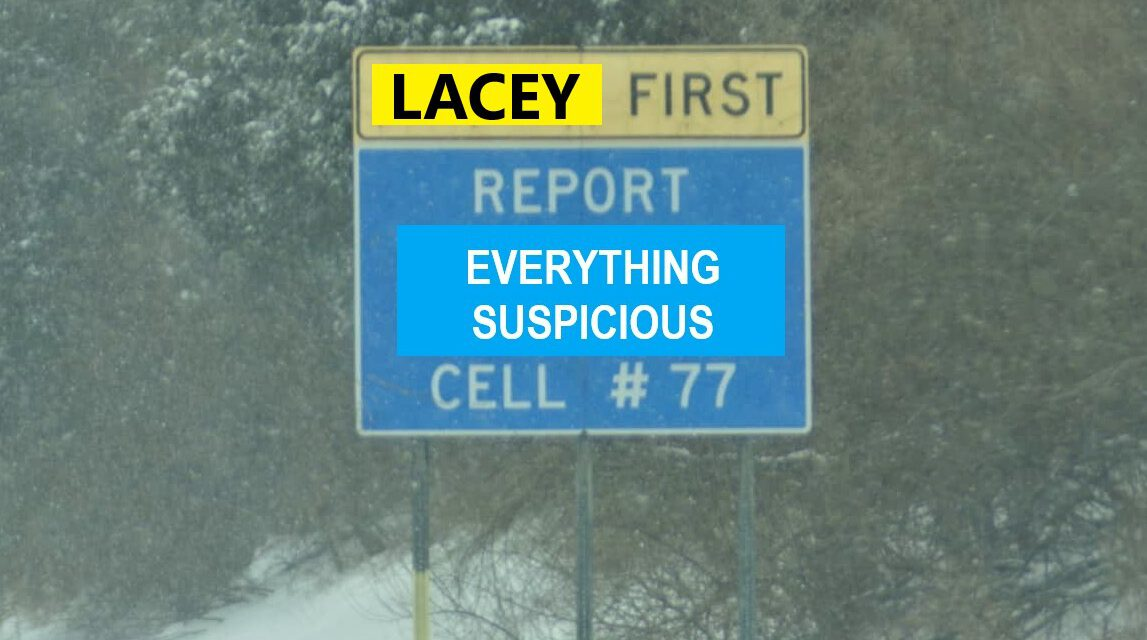 LACEY: LOCAL TOWN PANHANDLER IS INTOXICATED AND NEEDS EMS @ WAWA