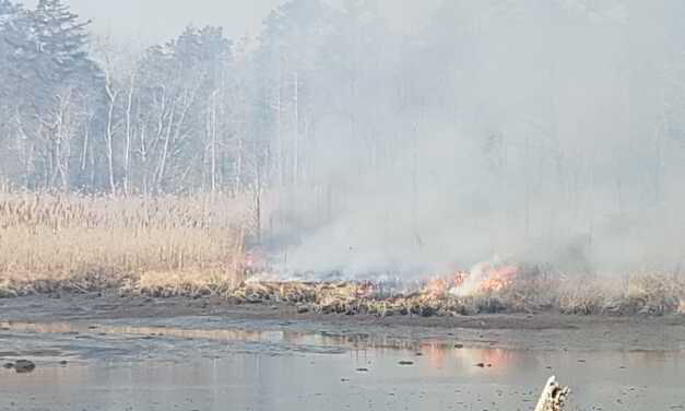 Brick: Controlled Burn Taking Place Near Channel Dr.