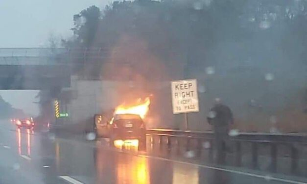 GARDEN STATE PARKWAY: WORKING VEHICLE FIRE