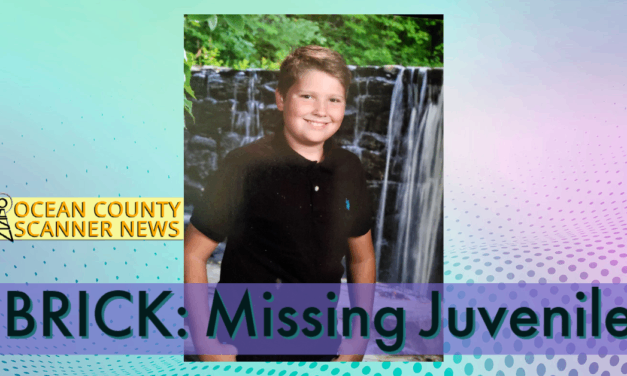 BRICK: Missing Juvenile