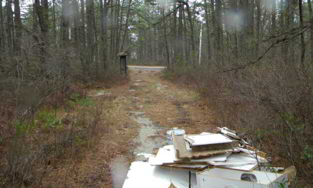 WARETOWN: Police Request Assistance Locating Lowlifes Who Illegally Dumped in Woods