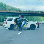 Hero State Trooper Rescues 8 Year Old Boy, Dogs Chasing His Dogs on Garden State Parkway