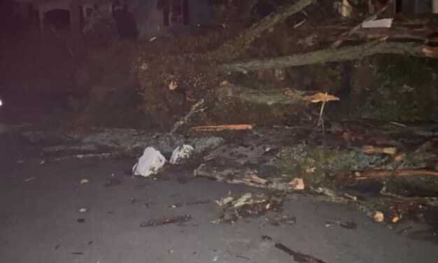 Monmouth County Residents Wake Up To Storm Damage