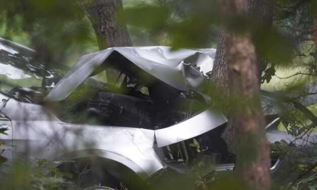 BRICK: GSP X91 SB – car Into Woods